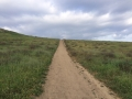 trail081.jpg