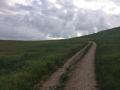 trail085.jpg
