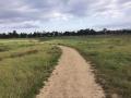 trail089.jpg