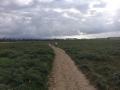 trail092.jpg