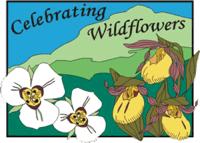 celebrating wildflowers
