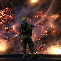 firefighter-rimfire