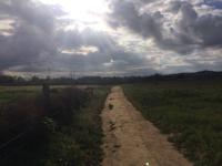 small-trail098